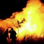 Природные пожары. Как выжить