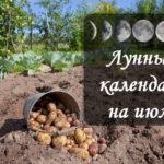 Лунный посевной календарь на июль 2017 года
