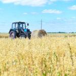 Президент РТ призвал аграриев Елабужского района максимально ускорить темпы уборки урожая