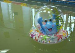 В детском саду «Лейсан» открылся бассейн
