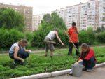 В Елабуге созданы трудовые отряды для школьников