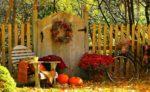 Пожарная безопасность в садоводческих обществах осенью