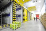 Для строительства центра X5 Retail Group в Елабуге привлекут Фонд развития моногородов