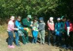 В елабужском «Школьном лесничестве» дети узнают, как ухаживать за лесом