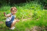 Мифы и правда об аллергии: 10 советов врача родителям ребёнка-аллергика