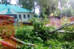 Непогода «косит» деревья в Елабуге