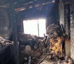 В Елабужском районе от пожара пострадала многодетная семья