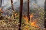 В Елабужском районе во время пожара оперативно сработали все службы города