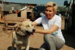 Ольга Павлова: необходимо ввести обязательную регистрацию домашних животных