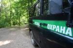Лесные патрули и мониторинг из космоса: как охраняют леса Татарстана в аномальную жару