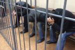 В Альметьевске под суд пойдут трое мужчин, которые расплачивались фальшивками