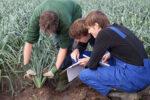 Желающих открыть свое дело на селе, приглашают в школу начинающего фермера